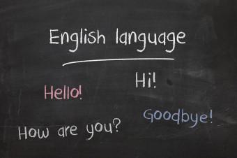 ¡Nunca es tarde para aprender inglés! 3, 6 o 9 meses de clases de inglés en Brampton School