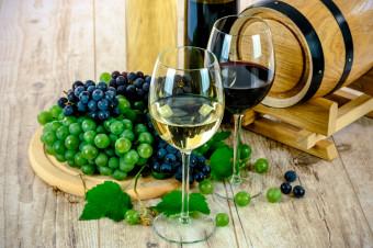 Starvinos: curso de cata de vinos